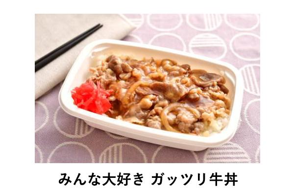 VanillaAir 機内食 ガッツリ牛丼