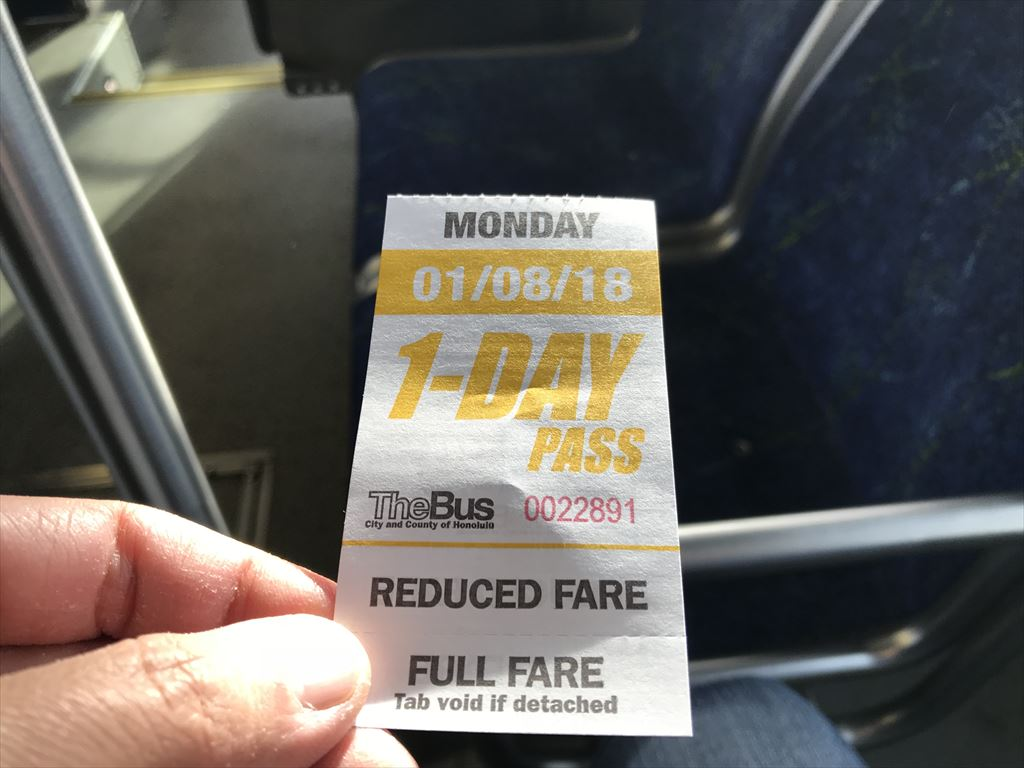 The Bus 1-DAY Pass