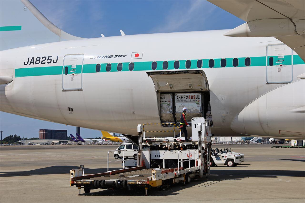 ZIPAIR シンガポール初便貨物は満載状態